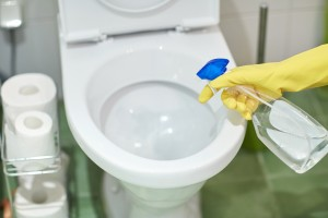 Quick organizing tip for a clean bathroom include the toilet.